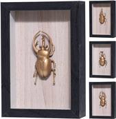 Obraz so zlatým chrobákom / CR 282646
