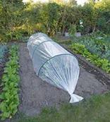 Fólia na semienka a skoré rastliny 2 x 10 m